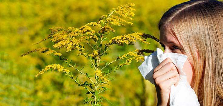 sinus-catarrh-hayfever-allergies