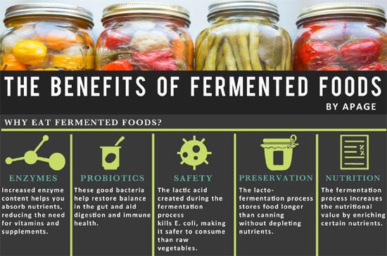 Fermented Foods Health Stores Ireland Health Stores Ireland